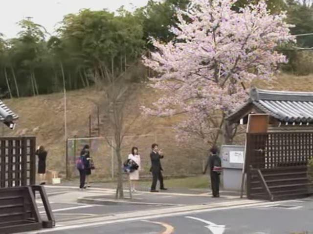 東大寺学園へ入学「お寺とのご縁」